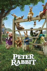 Peter-rabbit-5e49915298f3a
