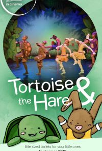 Tortoise The Hare